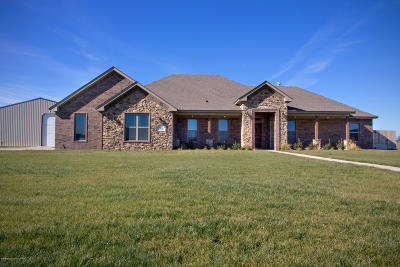 Amarillo Single Family Home For Sale: 2450 Blue Springs
