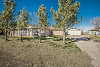 Amarillo Single Family Home For Sale: 1601 Ottawa Trl