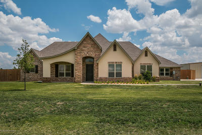Amarillo Single Family Home For Sale: 9301 Lundy Ln