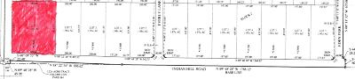 Amarillo Residential Lots & Land For Sale: Blk 2 Lt 1 Indian Hill Rd