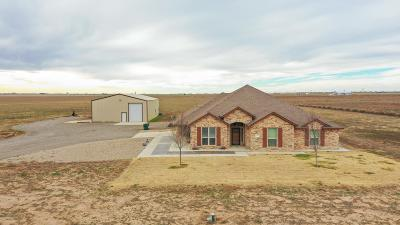 Amarillo Single Family Home For Sale: 6460 Arnot Rd