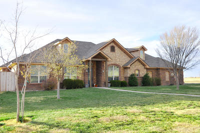 Amarillo Single Family Home For Sale: 9050 Bridle Trails Dr