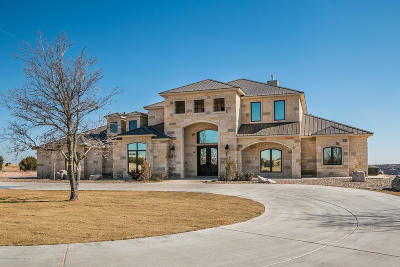 Amarillo Single Family Home For Sale: 14150 Elk Canyon Rd