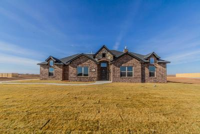 Amarillo Single Family Home For Sale: 9240 Garrison Creek Drive