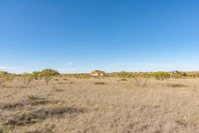 Amarillo Residential Lots & Land For Sale: 7501 East Lake View Rd