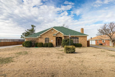 Borger Single Family Home For Sale: 228 Cimarron St
