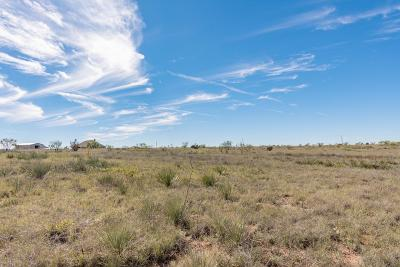 Amarillo Residential Lots & Land For Sale: 14300 Canyon Pass Rd
