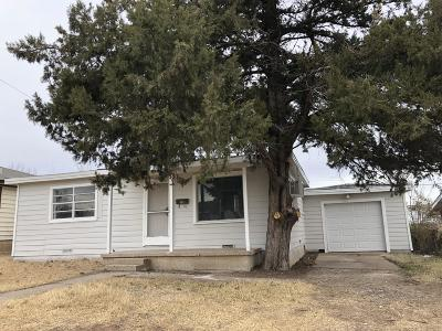 Borger Single Family Home For Sale: 113 Ozmer St