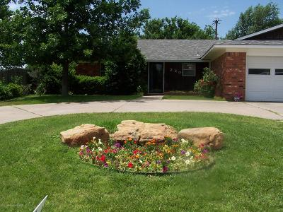 Borger Single Family Home For Sale: 220 Concord St