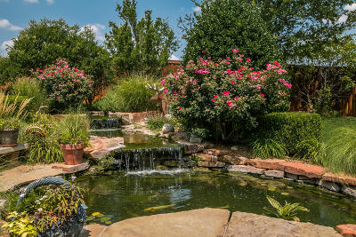 Amarillo Single Family Home For Sale: 6310 Basswood Ln