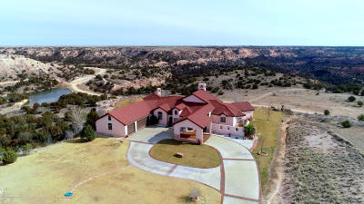 Amarillo Single Family Home For Sale: 7950 East Lake View Rd