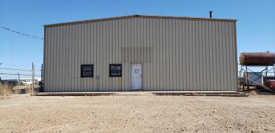 Commercial For Sale: 409 Industrial Blvd