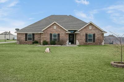 Amarillo Single Family Home For Sale: 5510 Newt Dobbs Trl