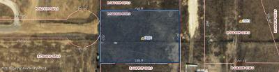 Amarillo Residential Lots & Land For Sale: 14200 Maple Dr