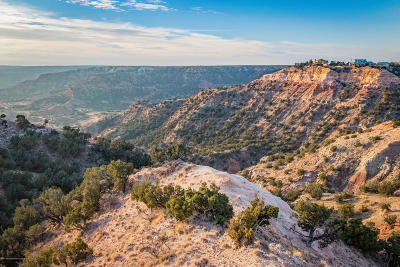 Canyon Residential Lots & Land For Sale: Palo Duro Tract 1