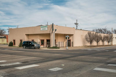 Amarillo Commercial For Sale: 219 S Pierce St