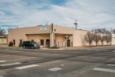 Potter County Commercial For Sale: 219 S Pierce St