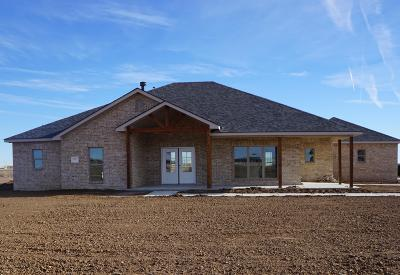 Potter County Single Family Home For Sale: 2251 Paige Ln