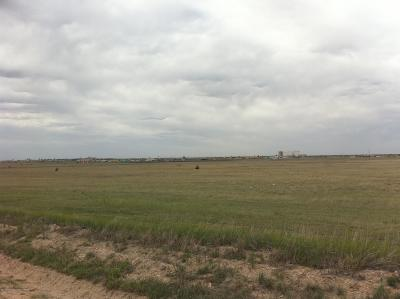 Amarillo Residential Lots & Land For Sale: Fm 1258 (Pullman)