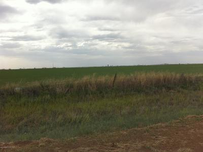 Amarillo Residential Lots & Land For Sale: County Rd 34