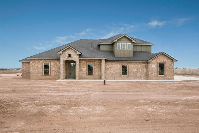 Amarillo Single Family Home For Sale: 9625 Help Ln