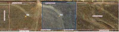Amarillo Residential Lots & Land For Sale: 9401 Fm 2219