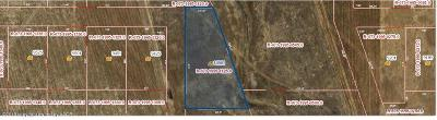 Amarillo Residential Lots & Land For Sale: 14901 Let It Be Dr