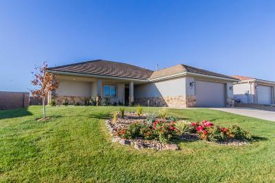 Amarillo Single Family Home For Sale: 1103 Chardonnay Blvd