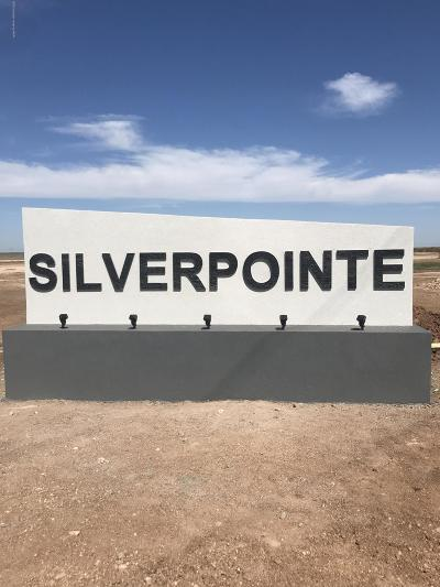 Amarillo Residential Lots & Land For Sale: Silverpointe