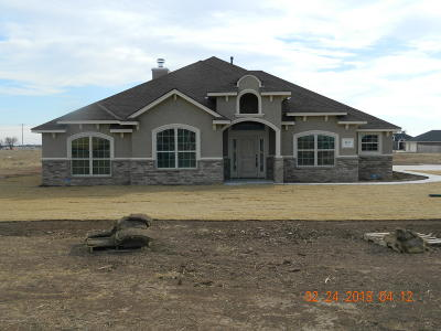 Amarillo Single Family Home For Sale: 9147 Yesterday Lane East