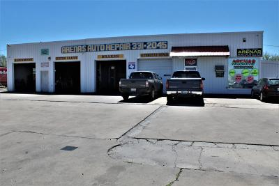Commercial For Sale: 3809 Amarillo Blvd
