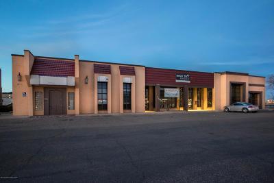 Potter County Commercial For Sale: 3712 Olsen Blvd