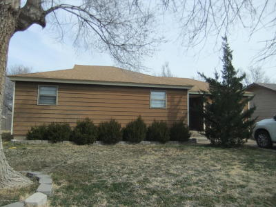 Carson County Single Family Home For Sale: 403 Horn St