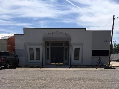 Amarillo Commercial For Sale: 305 Williams St