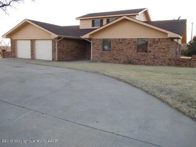 Borger Single Family Home For Sale: 814 Skyline Dr