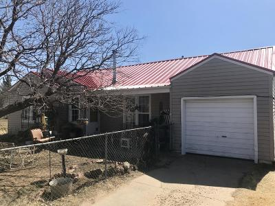 Amarillo Single Family Home For Sale: 1114 Central Ave