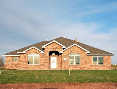 Amarillo Single Family Home For Sale: 14600 Maple Dr