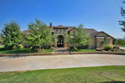 Amarillo Single Family Home For Sale: 104 Overlook Circle