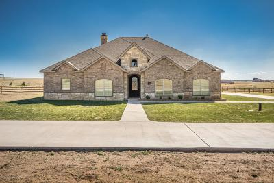 Amarillo Single Family Home For Sale: 13151 Genevieves Way