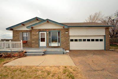Single Family Home For Sale: 8720 Western St