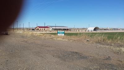 Amarillo Commercial For Sale: Loop 335 East