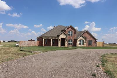 Amarillo Single Family Home For Sale: 5101 Bushland Rd