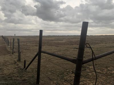 Amarillo Residential Lots & Land For Sale: Parsley Rd