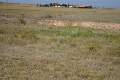Amarillo Residential Lots & Land For Sale: 13300 Wandering Rd
