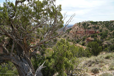 Canyon Residential Lots & Land For Sale: 10501 Capitol Peak Trl