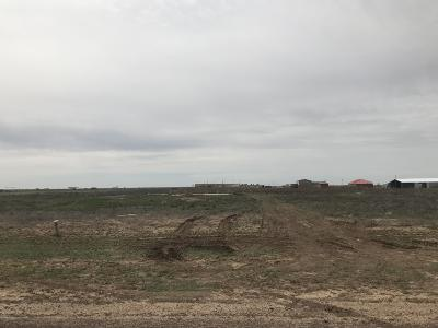 Amarillo Residential Lots & Land For Sale: Fm 2575