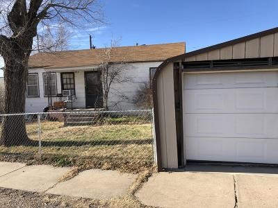 Borger Single Family Home For Sale: 211 Butadieno St