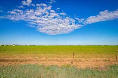 Canyon Residential Lots & Land For Sale: 0 Western Tract 9
