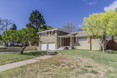 Amarillo Single Family Home For Sale: 123 Parkview Dr