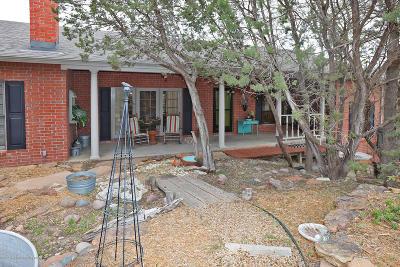 Amarillo Single Family Home For Sale: 310 Shore Dr